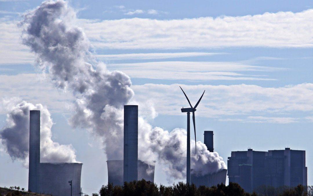 Mythos: Windkraft ist sauber