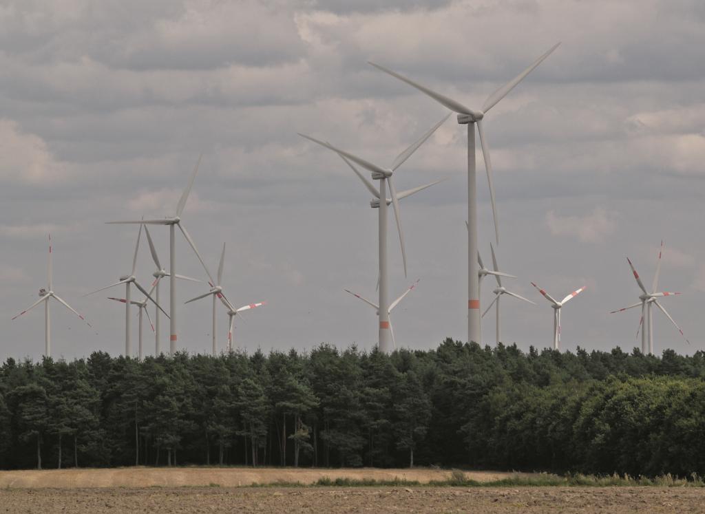 Waldsaum-Areale mit Windrädern - wie im ›Windpark‹ Feldheim