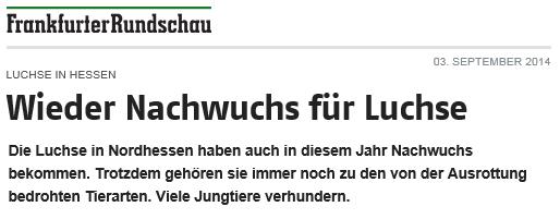 luchs2